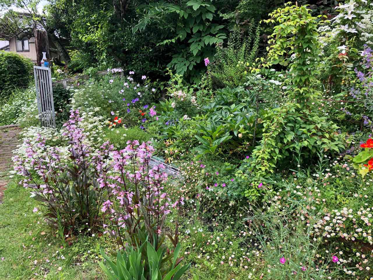 ハリスカフェのおしゃれなお庭