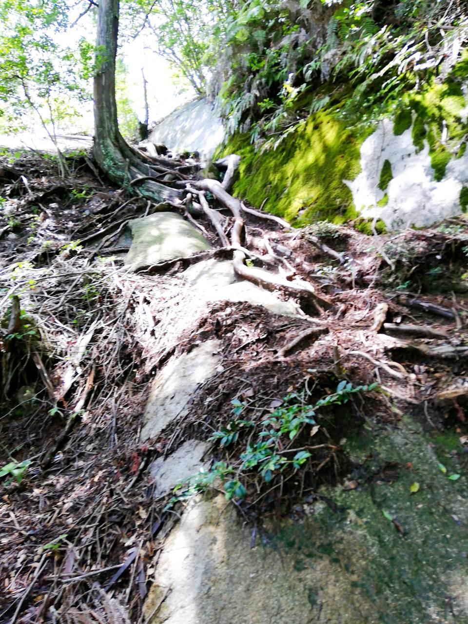 紅岩直前の急な坂