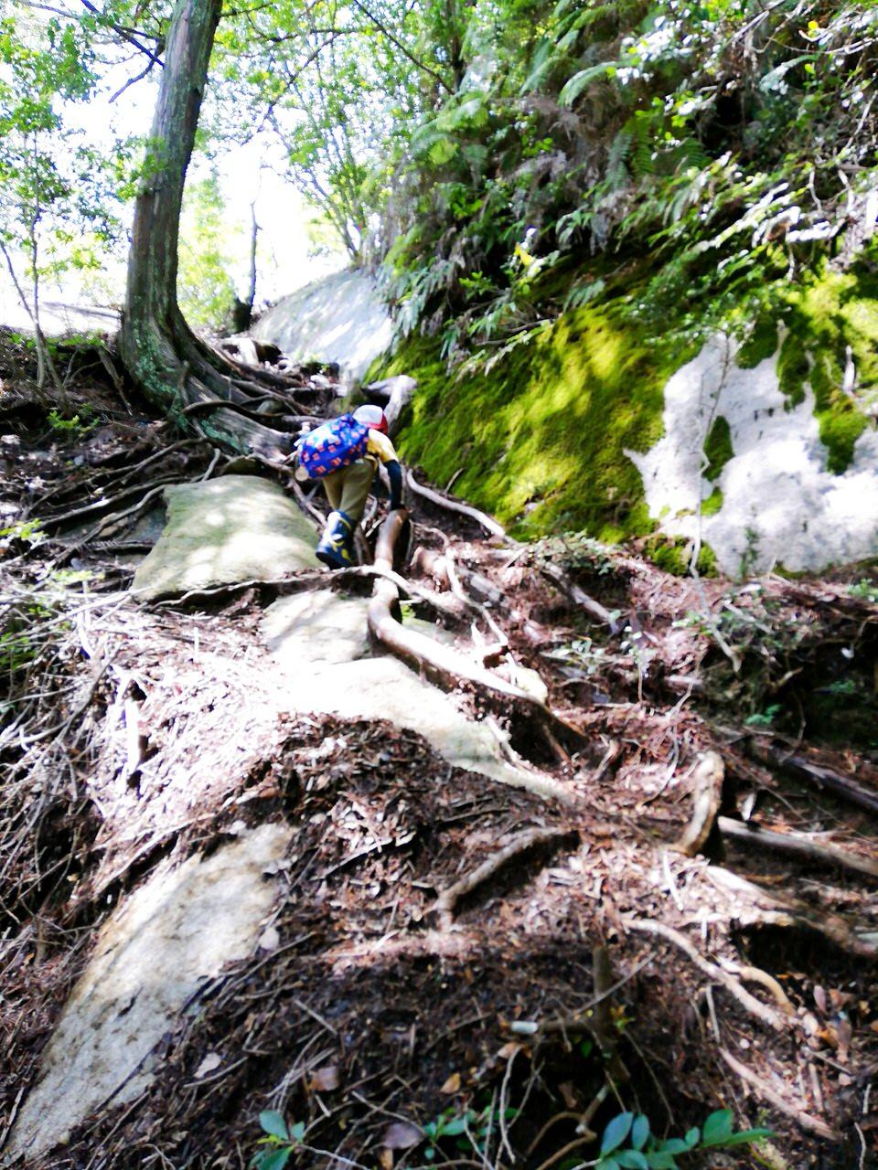 紅岩直前の急な坂を子供が登る