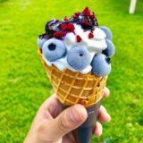 恵那ブルーベリーの丘ホピのブルーベリーソフトクリーム