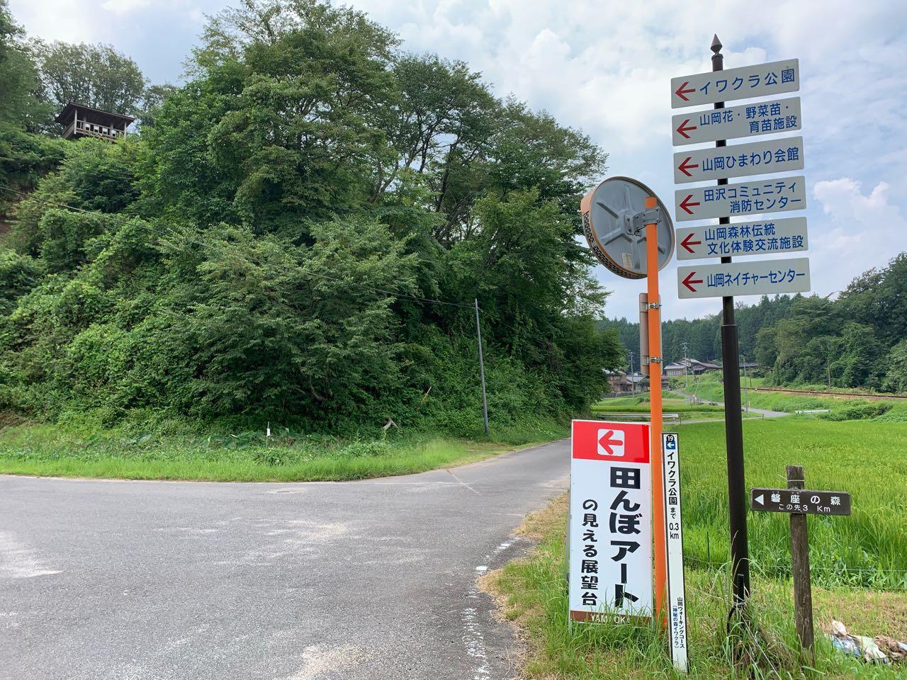 恵那市 山岡町 田んぼアート1