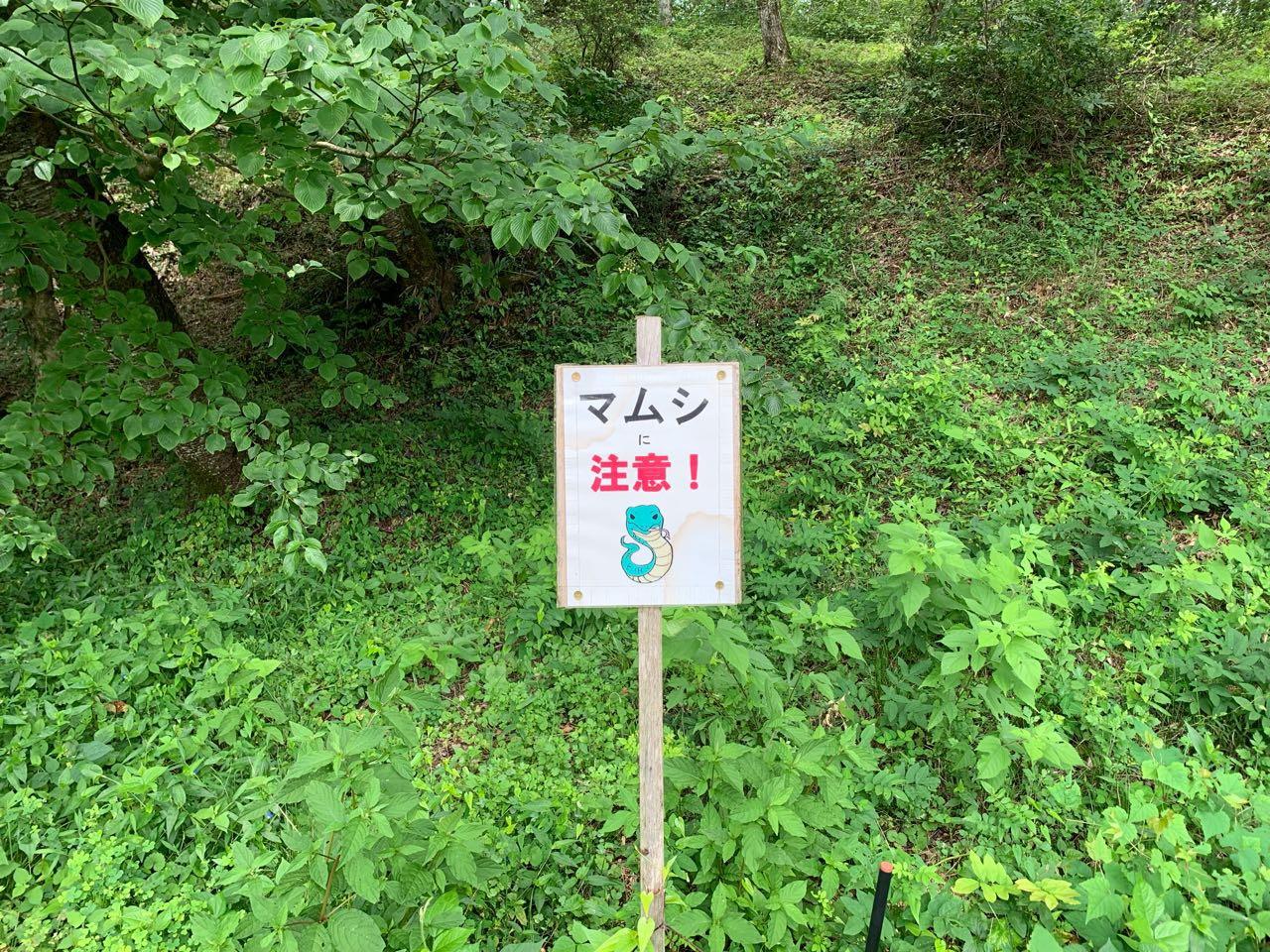 田んぼアート 恵那市 山岡町