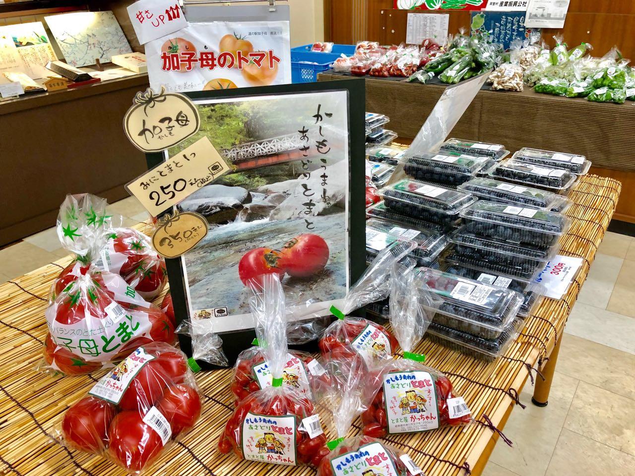 中津川加子母トマト
