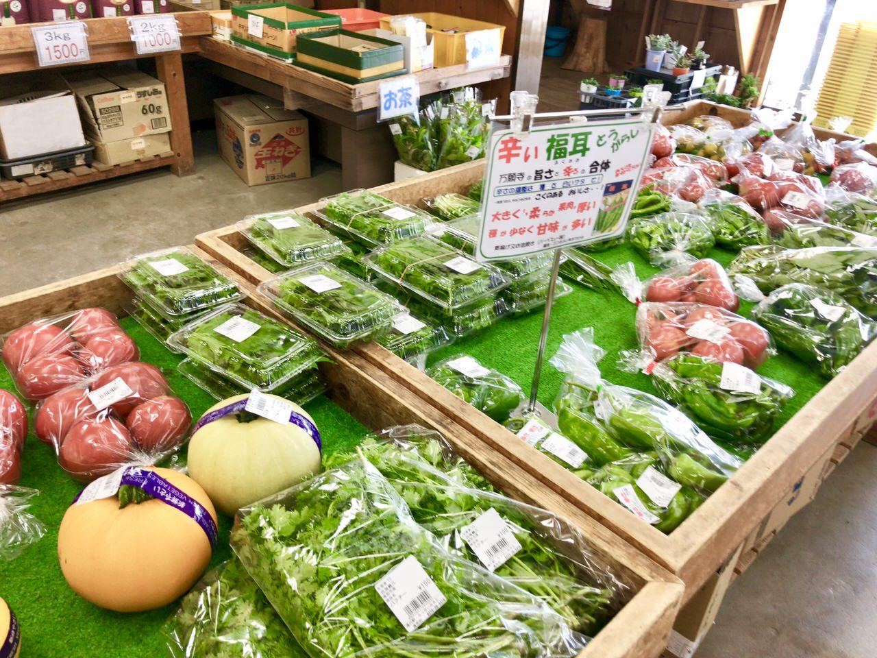 らっせい三郷の野菜
