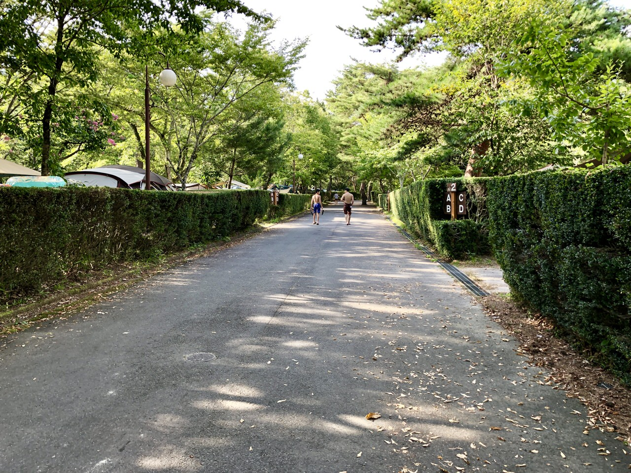 福岡ローマン渓谷オートキャンプ場の道路
