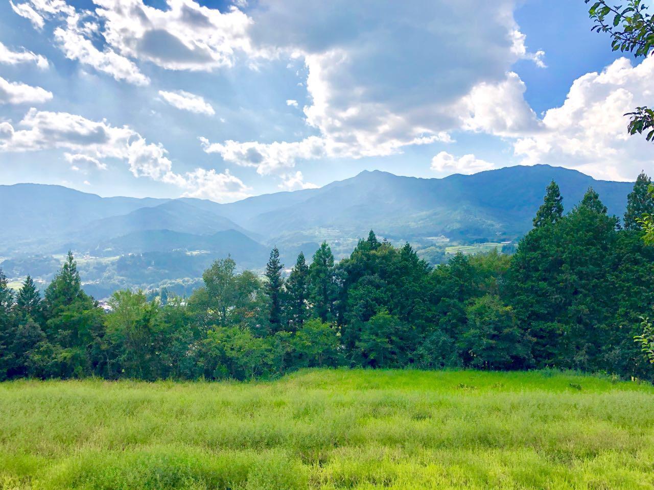 中津川市福岡あじめこしょうの畑からの景色