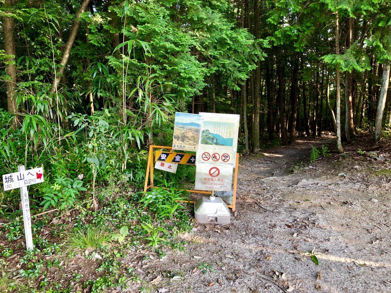 さくら公園から苗木城への道