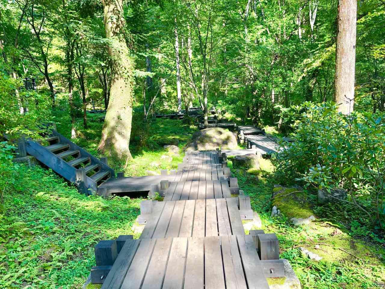 付知峡の散歩コース